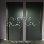 Puerta de paso acabado ceniza_001