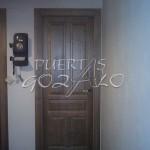 puerta pino ciega plafonada_001